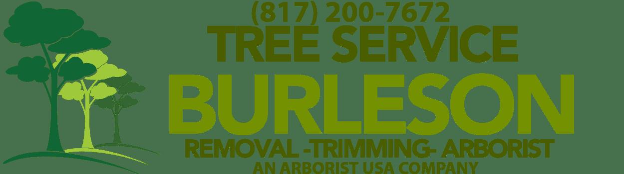 Tree Service Burleson